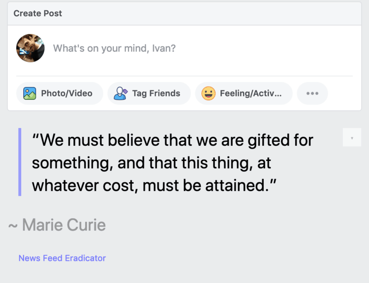 feed eradicator